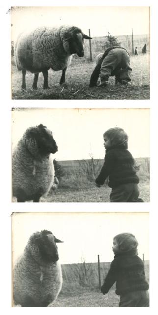 emilie-mouton