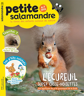 l-ecureuil-super-casse-noisettes-1_fr_713