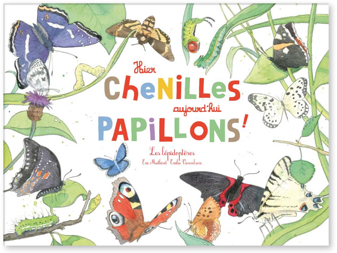 couv-papillons