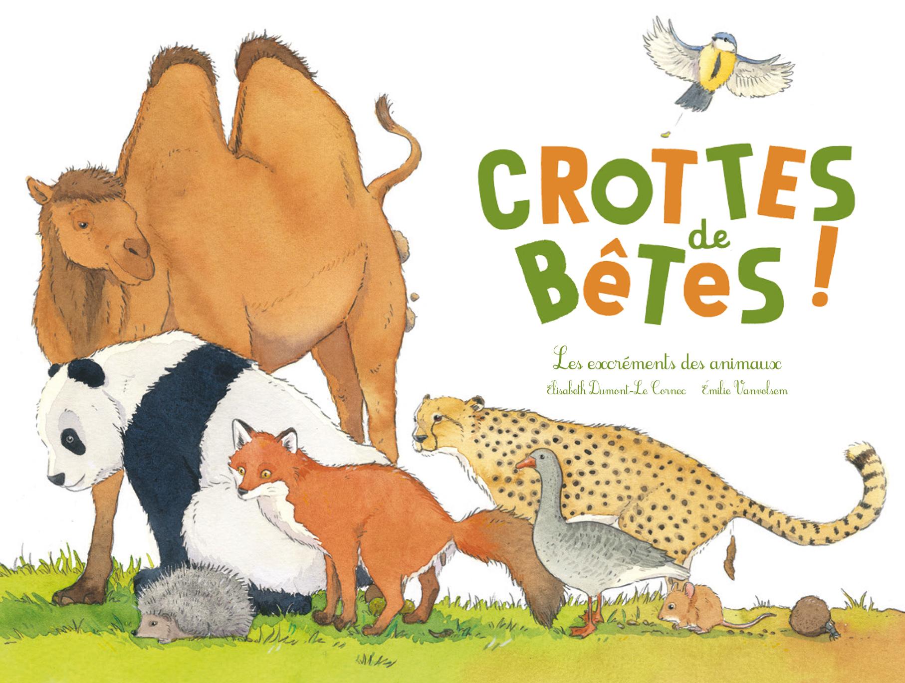 Crottes-couv